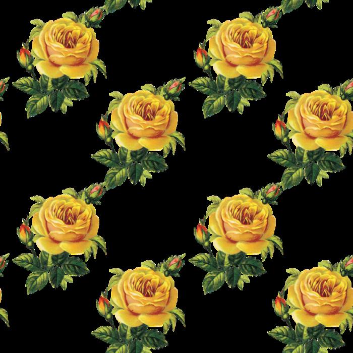 Клипарт. Розы на прозрачном фоне ...: www.liveinternet.ru/users/nurika/post176442940