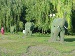 Превью слоны (600x450, 98Kb)