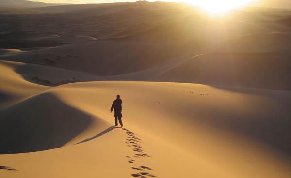 desert_web2 (600x368, 33Kb)