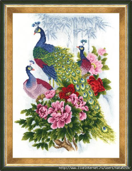 ZR RS-012 Peacocks (465x600, 183Kb)