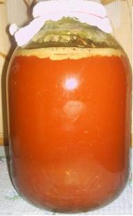 винный гриб (192x311, 8Kb)