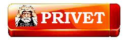 3996605_merlinwebdesignPRIVET (250x79, 30Kb)