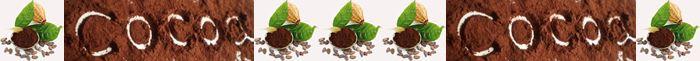 Применение какао-порошка в косметических целях. /2719143_1200012 (700x61, 14Kb)