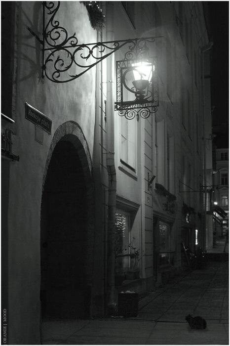 Ночь улица фонарь аптека и кошка