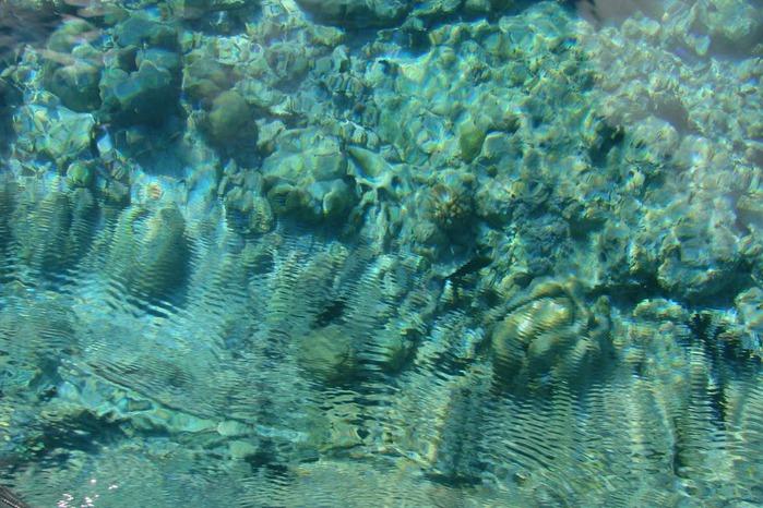 Атолл Альдабра — чудо природы 53774