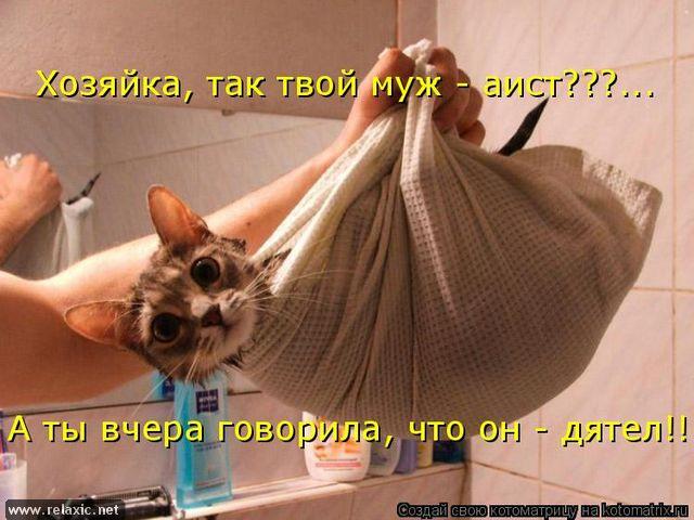 http://img0.liveinternet.ru/images/attach/c/3/76/411/76411762_3802001_1_23.jpg