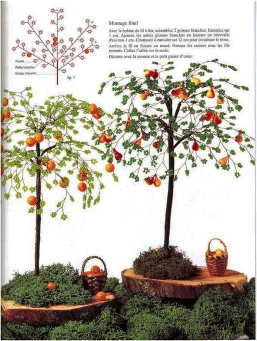 Смотрите также фруктовые деревья из