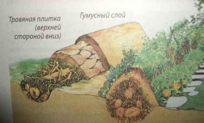 3857712_00_Visokie_gryadi_v_razreze_800 (700x423, 21Kb)