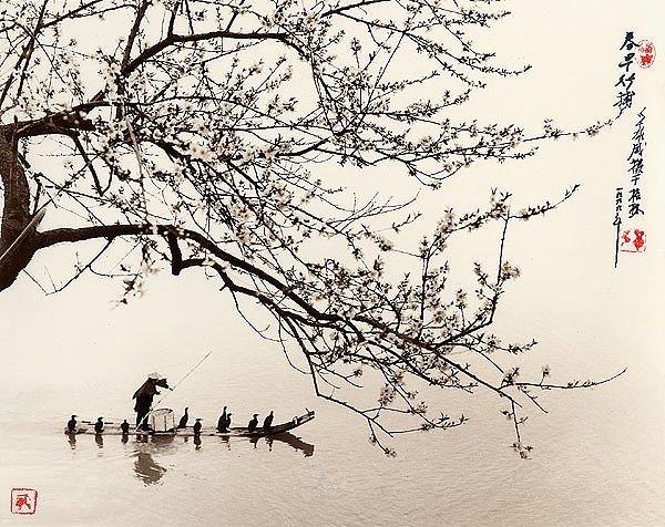 Профессиональные фото природы от Дон Хонг-Оай/2822077_x_777f323a (600x476, 110Kb)