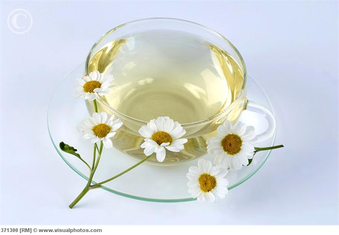 a_cup_of_feverfew_tea_and_fresh_flowers_371300 (700x486, 28Kb)