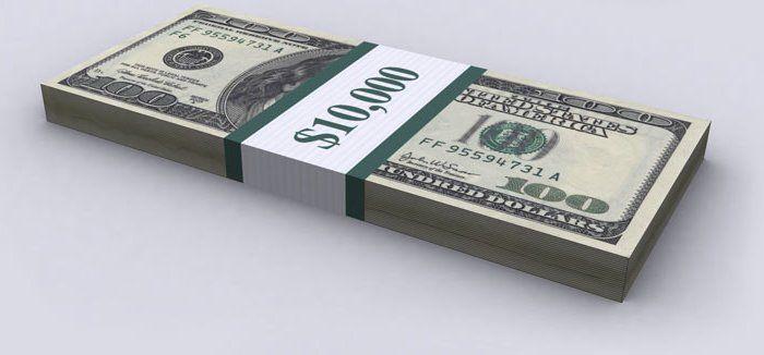 Долг США в 100-долларовых банкнотах 02 (700x326, 30Kb)