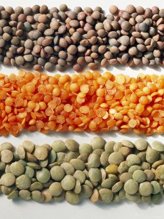 3824370_lentils (337x450, 66Kb)