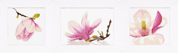 Lanarte Magnolia (700x208, 14Kb)