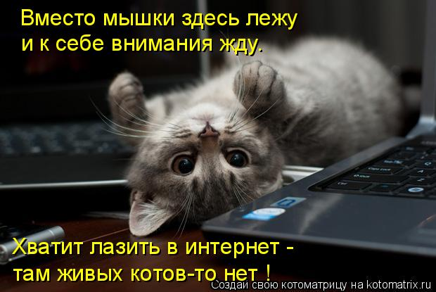 67489972_1291574492_681802 (620x415, 43Kb)