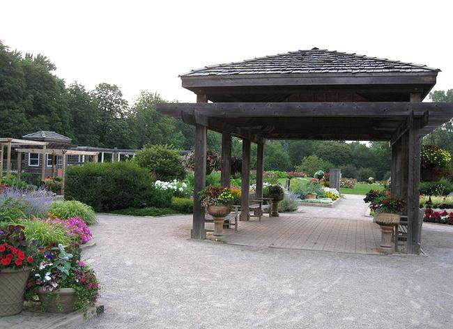 Idea garden  Flickr - Photo Sharing! (650x472, 567Kb)