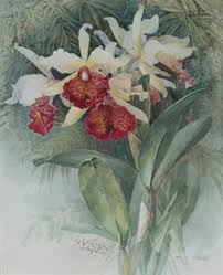 4430707_p_de_Longre_orhidei (202x249, 7Kb)