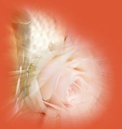 Lightburst (250x265, 79Kb)