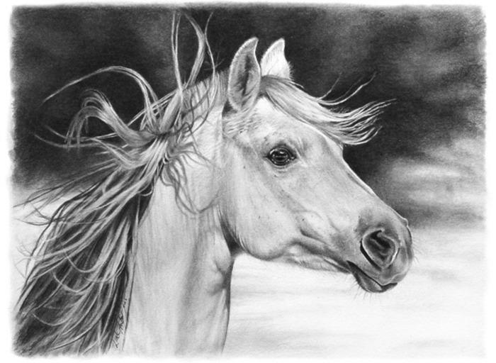 horse1ua (700x512, 94Kb)