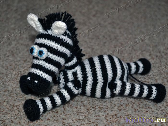 ��� ������ ���������/1198961_zebra03 (700x525, 107Kb)