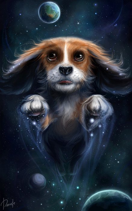 76627039_Dream_Dog_by_Darvete (439x700, 91Kb)