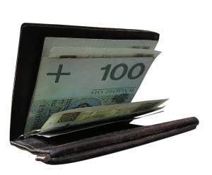 wallet (300x247, 44Kb)