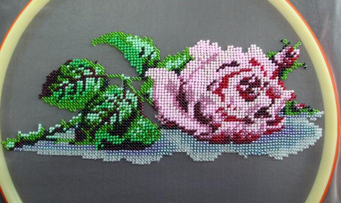 Роза лицо (700x417, 152Kb)