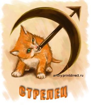 """Кошачий гороскоп  """"Кот-Стрелец """": предпросмотр."""