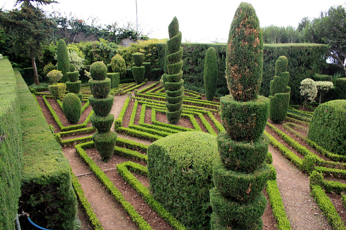funchal_botanical_garden_img_1806 (700x466, 220Kb)