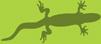 lizard (101x44, 6Kb)