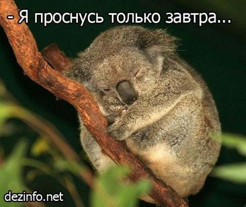 картинки хорошего сна