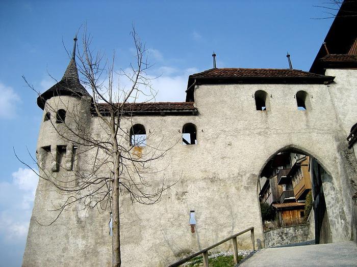 Замок графов де Грюйер (Chateau de Gruyeres) 35958
