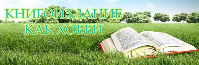 3424885_Bezimyannii (700x228, 46Kb)