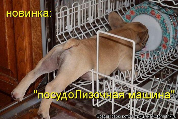 Котоматрица - посудоЛизочная машина новинка (700x469, 73Kb)