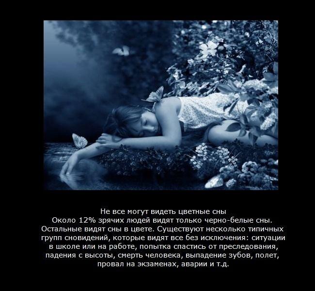 http://img0.liveinternet.ru/images/attach/c/3/76/795/76795728_large_2.jpg