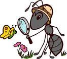 Я думаю, что каждый из нас должен изучать муравьев.