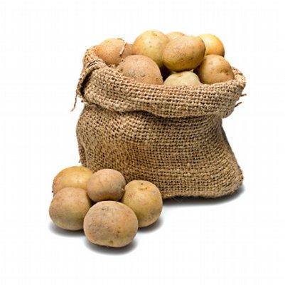 Учитель согласился и попросил ученика принести картофель и прозрачный.