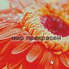 1798917_10 (100x100, 24Kb)