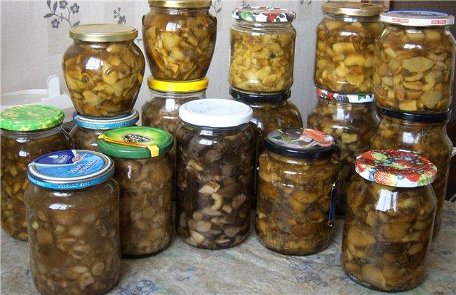 Мариновать грибы на зиму рецепты с фото