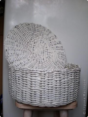 IMGP4405 (360x480, 45Kb)