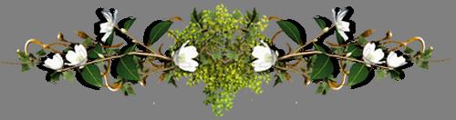 Разделитель больш с бел.цветочками (500x132, 106Kb)