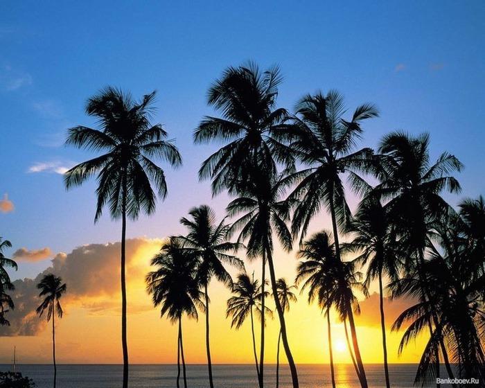 Фотографии солнца - как снимать рассвет или закат 1