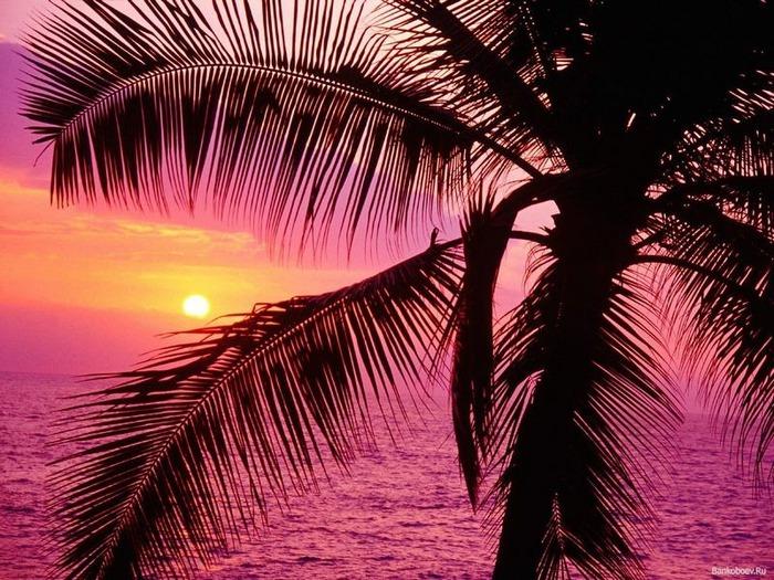 Фотографии солнца - как снимать рассвет или закат 7