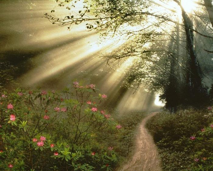 Фотографии солнца - как снимать рассвет или закат 25