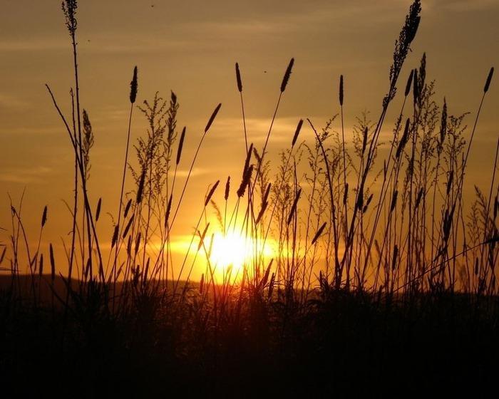 Фотографии солнца - как снимать рассвет или закат 45
