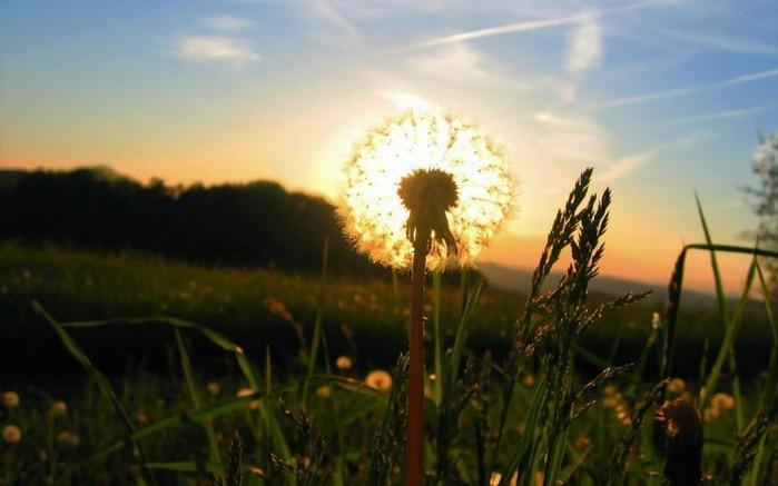 Фотографии солнца - как снимать рассвет или закат 46
