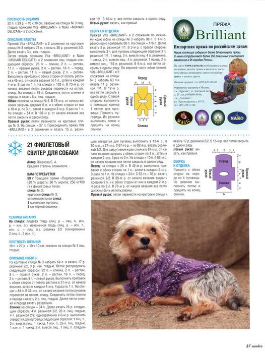 Связать свитерок для собаки спицами