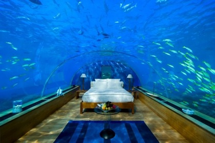 hilton-maldives-underwater-sleeping-2 (420x279, 40Kb)
