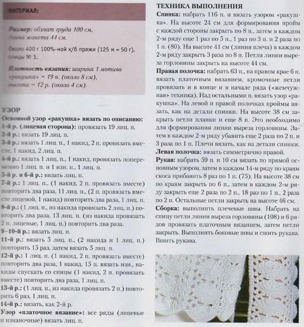 3863677_ajyrnii_jaket_spicvmi1 (593x639, 181Kb)