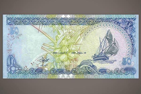 3279085_maldivi_rypiya_2 (600x400, 59Kb)