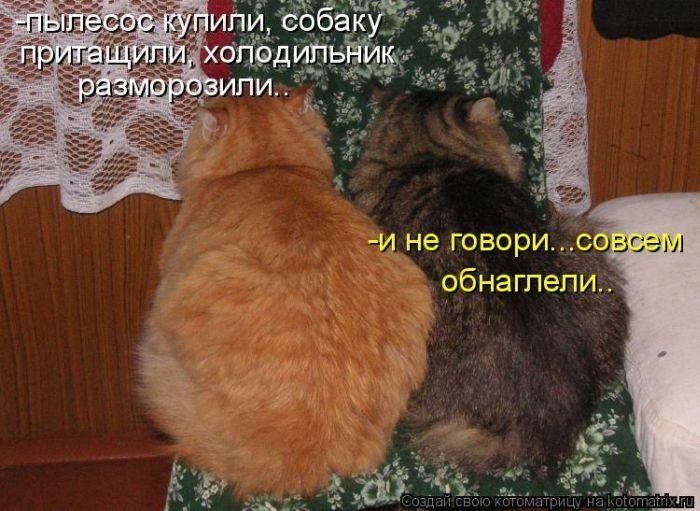 77019956_1308900894_kotomatrix_15.jpg